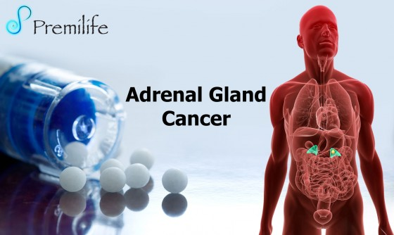 Adrenal-Gland-Cancer
