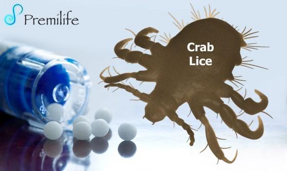 Crab-Lice