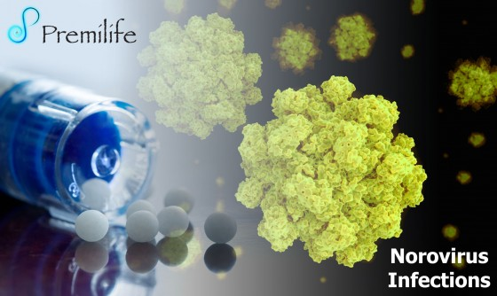 Norovirus-Infections