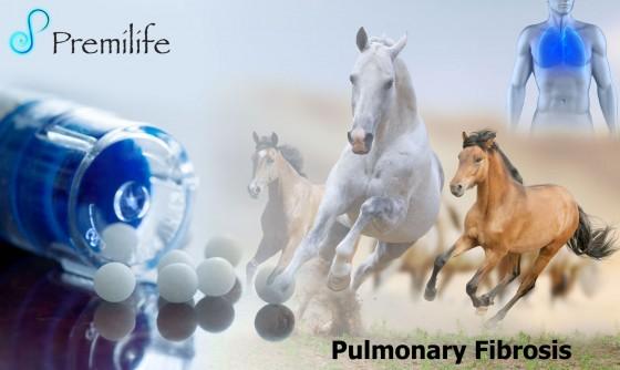 Pulmonary-Fibrosis