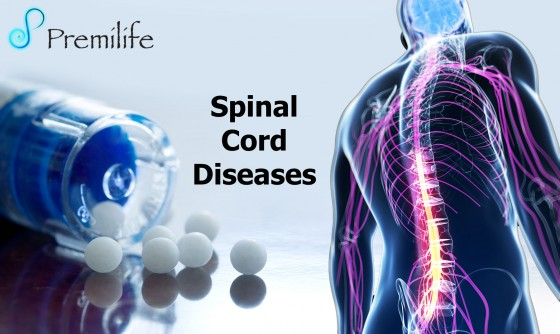 Spinal-Cord-Diseases