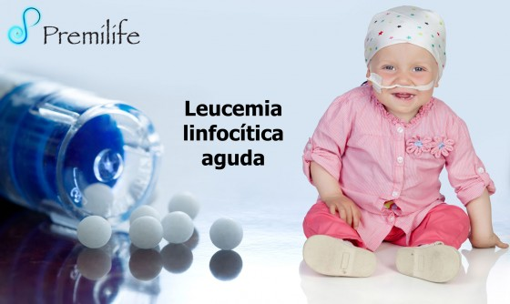 acute-lymphocytic-leukemia-spanish