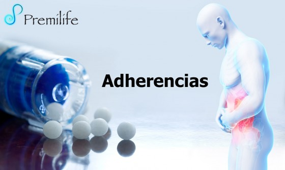 adhesions-spanish