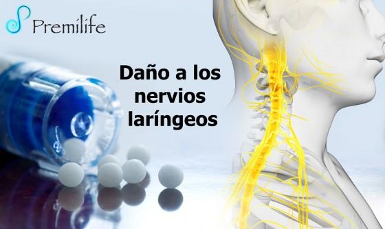 laryngeal-nerve-damage-spanish