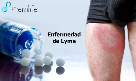 lyme-disease-spanish