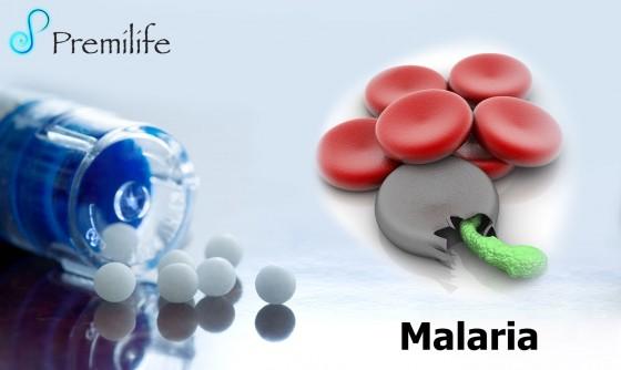 malaria-spanish