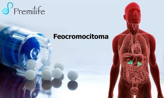 pheochromocytoma-spanish