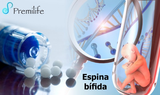 spina-bifida-spanish
