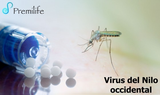 west-nile-virus-spanish