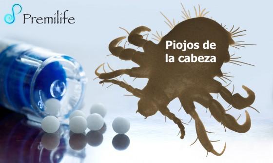 crab-lice-spanish