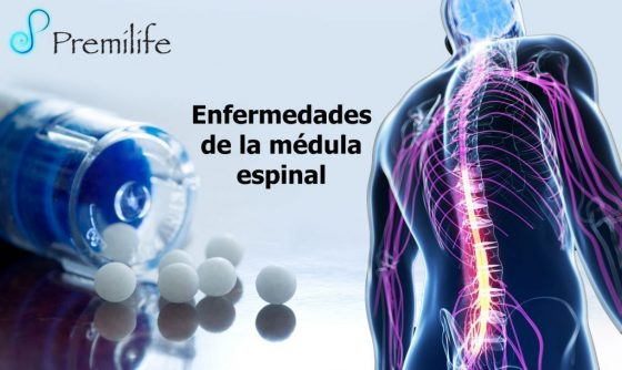 spinal-cord-diseases-spanish