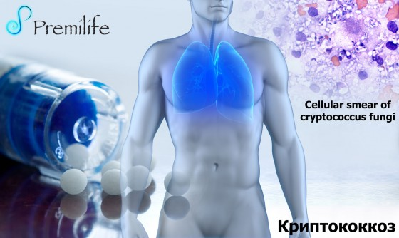 Cryptococcosis-russian