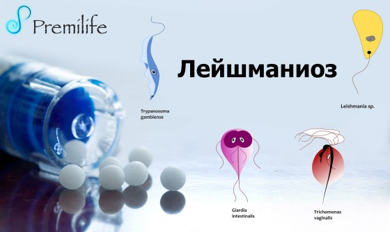 Leishmaniasis-russian