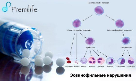 eosinophilic-disorders-russian