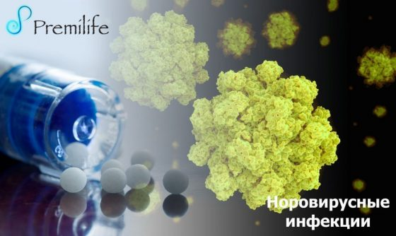 norovirus-infections-russian