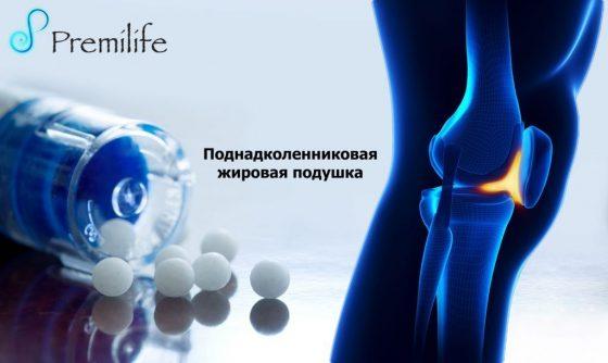 the-infrapatellar-fat-pad-russian