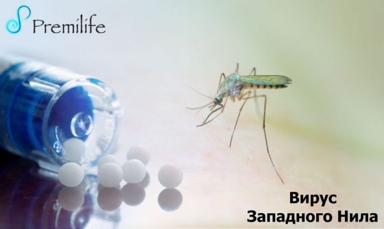 west-nile-virus-russian